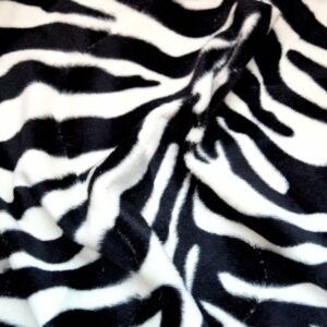 Animalia 159