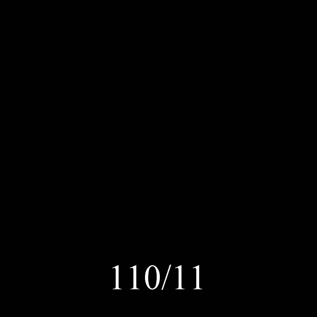 110-11 Negro