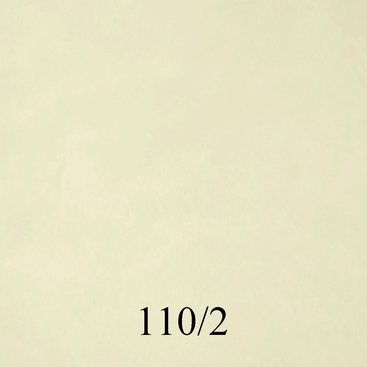 110-2 Crudo