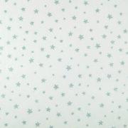 Shiny Stars 901